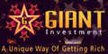 giantinvestment