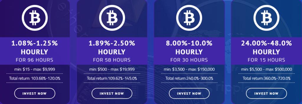 Bithour - маркетинг проекта
