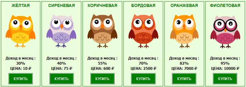 Money-owls - маркетинг игры