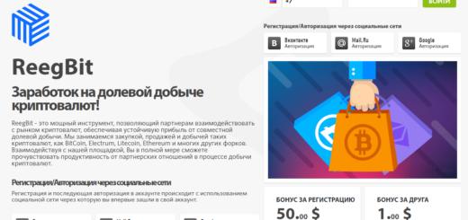 Reegbit.com - Обзор высокодоходного проекта