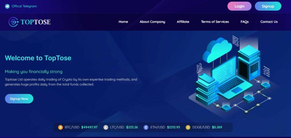 Toptose.com - Высокодоходный хайп проект